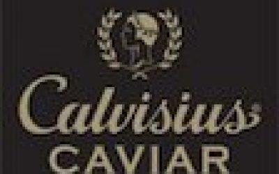 calvisus